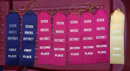 Chuck Wagon Ribbons